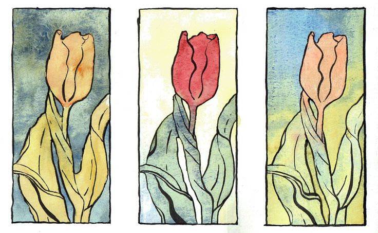 Tulips  by Lukas Bolz