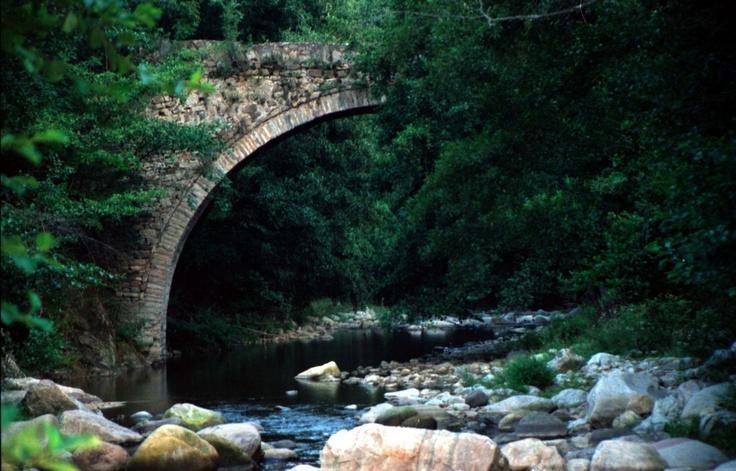 Stone bridge forest xanthi