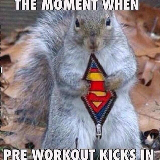 Funny Pre Workout Meme : Best images about pre workout funnies on pinterest