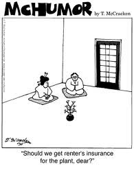 Renter Insurance Quotes Delectable Best 25 Renters Insurance Quotes Ideas On Pinterest  Renters