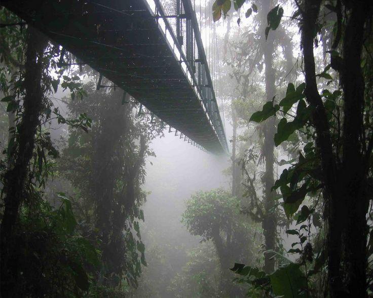 Мост в Коста-Рика (Costa Rica)