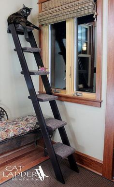 """6 step cat ladder - Tasteful design will complement your other furniture in your home. Sturdy construction of solid wood with your choice of warm finishes. Assembly is simple and fast. Carefully packaged to protect the finish for shipping. Carpet pads wrap around each step so your cat can easily climb up and bound at the edges so they won't unravel. Key Specs - Steps are 9""""x 9"""" - Stairs and landings made from maple or birch furniture grade plywood, rails made from white pine."""