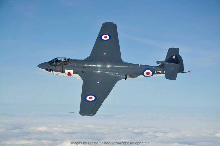 Hawker Sea Hawk, British jet fighter. First flight 1947. by Luigino Caliaro
