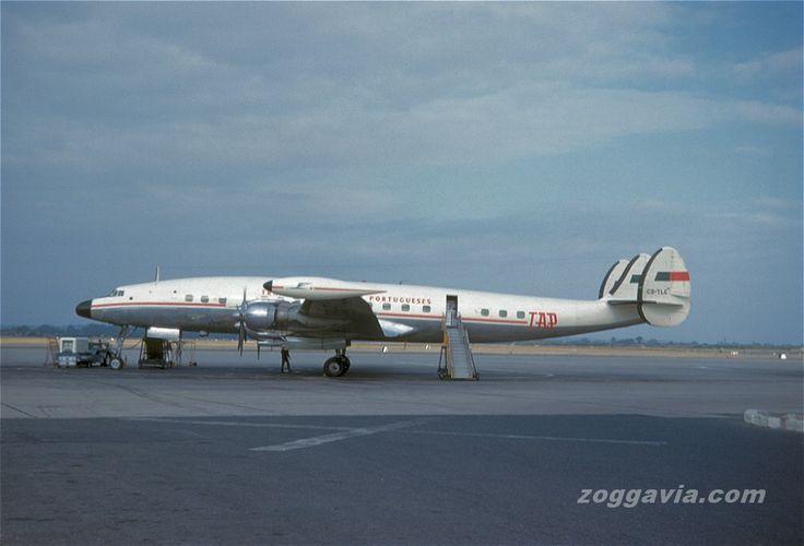 TAP Air Portugal Connie.