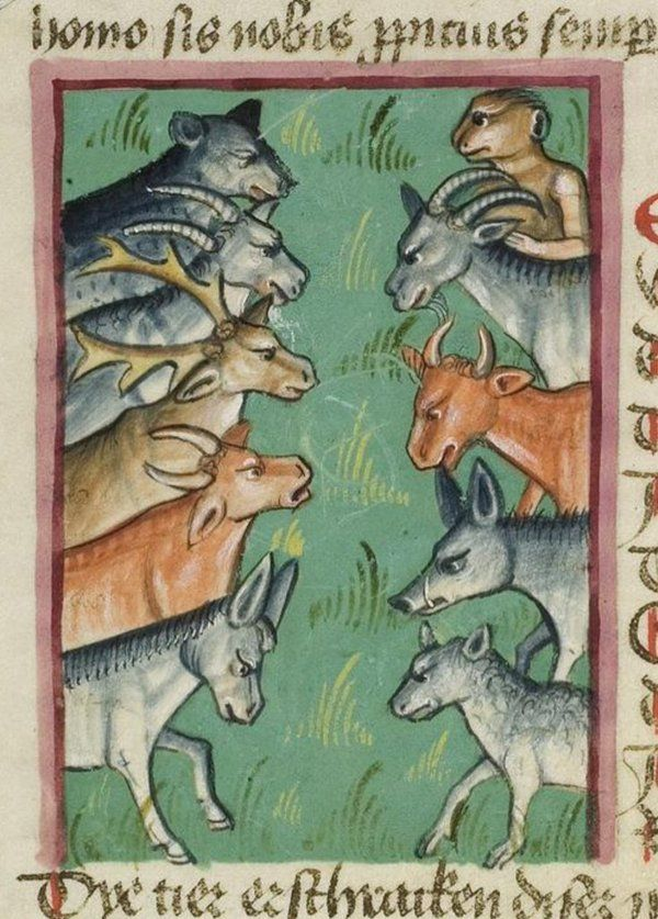 Confrontation! How will this end? HeidelbergUB Cpg291