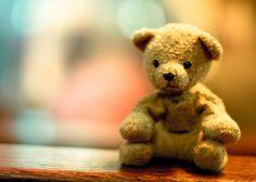So THAT'S Where Teddy Bears Got Their Name
