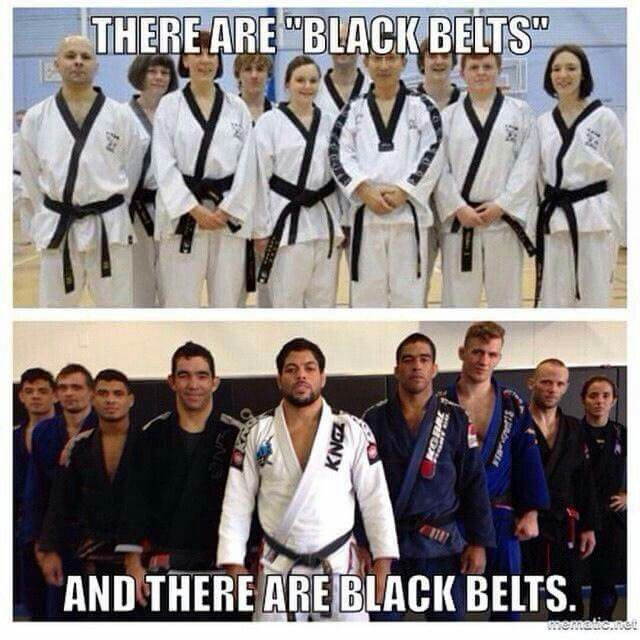 Brazilian Jiu Jitsu Belt Progression – Daily Motivational Quotes