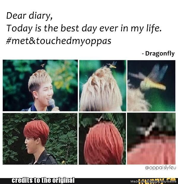 Our fellow army aka a dragonfly has fulfilled a dream of every army *cries uncontrollably* *clap clap* | allkpop Meme Center
