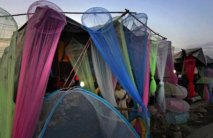pakistan: Idea, Favorite Places, Browses Mosquito, April 16, Pakistan Ridecolorfully, Pakistan Lovely Places Spaces, Pakistani Browses