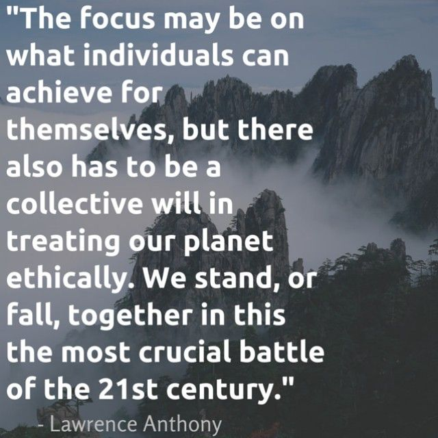 Quotes On Pollution 5