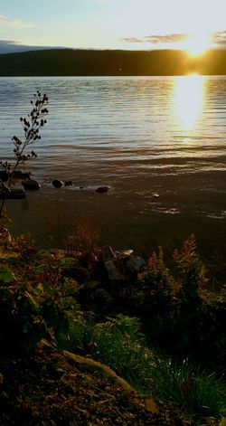 Sunset Water Nature Reflection Scenics Sun Beauty In Nature Sky Sunlight Tranquility No People Outdoors Tranquil Scene Autumn Colors Beauty In Nature