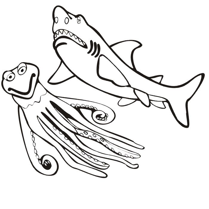 73 best Shark Coloring Pages images on Pinterest | Shark ...