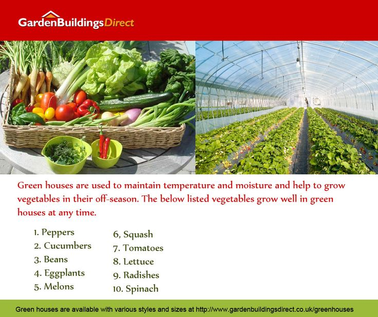 For all of you gardeners out there Garden Buildings Direct brings you an extensive range of greenhouses and greenhouse products.  We have metal greenhouses, wooden greenhouses and plastic greenhouse designed and developed to help the green figure among you to grow your own fruit and veg. Log on http://www.gardenbuildingsdirect.co.uk/greenhouses