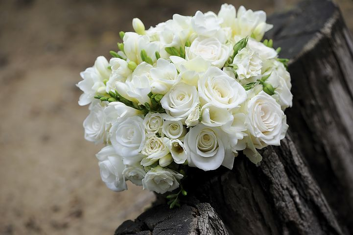 buy groups of white roses to send your girlfriend or your relative on this valentine day if you want to impress someone then you should to send flowers and gift.