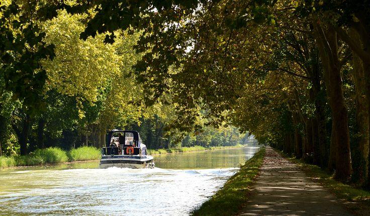 Balade en bateau sur le canal du midi Par CRT Midi-Pyrénées / Patrice THEBAULT #TourismeMidiPy #MidiPyrenees #France #Fluvial #Bateau #Peniche #CanalMidi #CanalduMidi