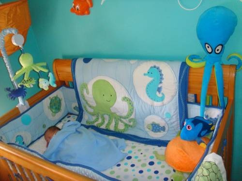 Month later and FINALLY got our sea life nursery done! - CafeMom