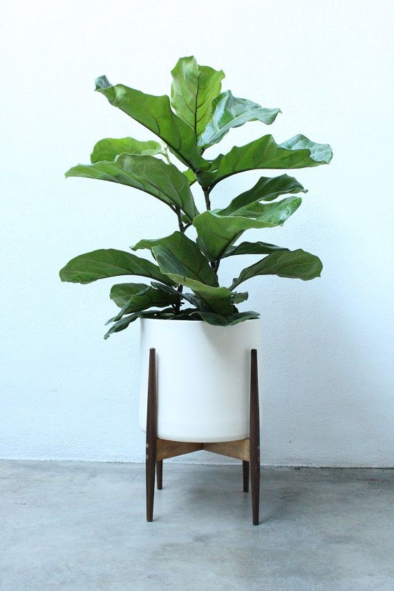 £64 Modern Plant Stand Set / PEDESTAL / Walnut Stand and Planter / BLACK or WHITE Pot