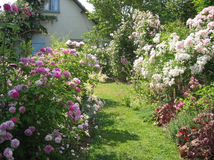1555 best Garden Dreams ~ Cottage gardens, borders \ details - cottage garten deko