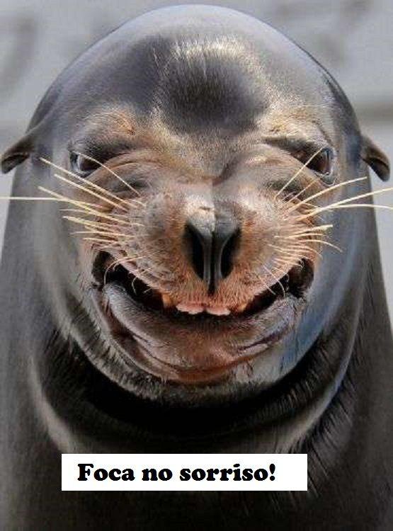 Foca no sorriso!