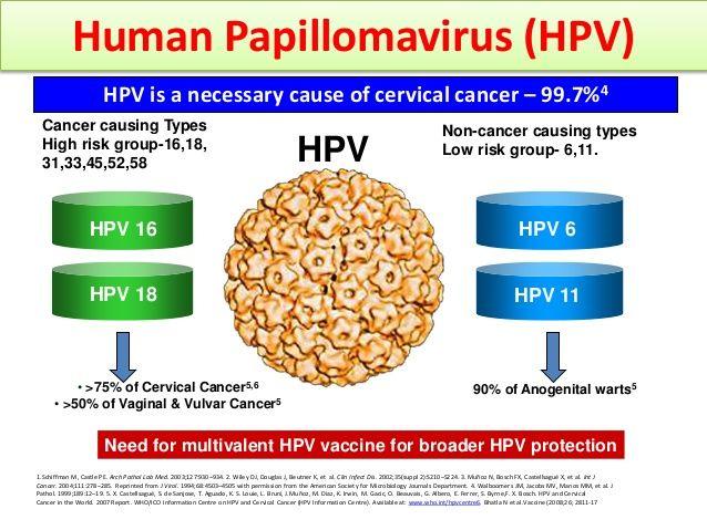 human papillomavirus ka un leac rapid pentru viermi