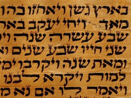"""Torah means """"teaching"""" and refers to the five books of Moses- Genesis, Exodus, Leviticus, Numbers and Deuteronomy.: Genesis, Books, Exodus, Teaching, Numbers, Moses"""