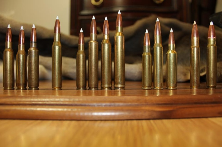 6 5 X 55 260 Remington 6 5 X 284 Norma 270 Winchester