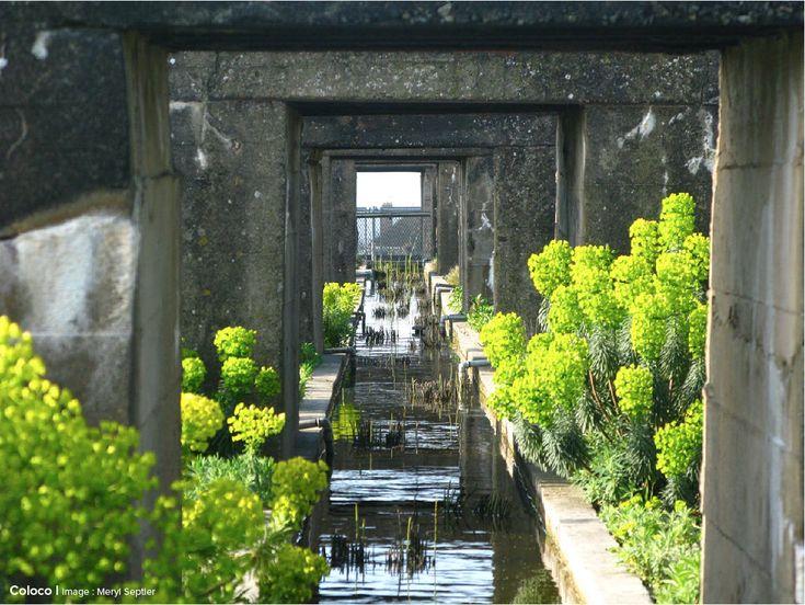 Jardins du Tiers-Paysage Le jardin du Tiers-paysage proposé pour le Toit de la Base sous-marine de Saint Nazaire est composé d'espèces appartenant au Tiers-paysage de l'Estuaire et, pour partie, d'espèces convergentes compatibles avec le climat et l'absence de sol de la base.