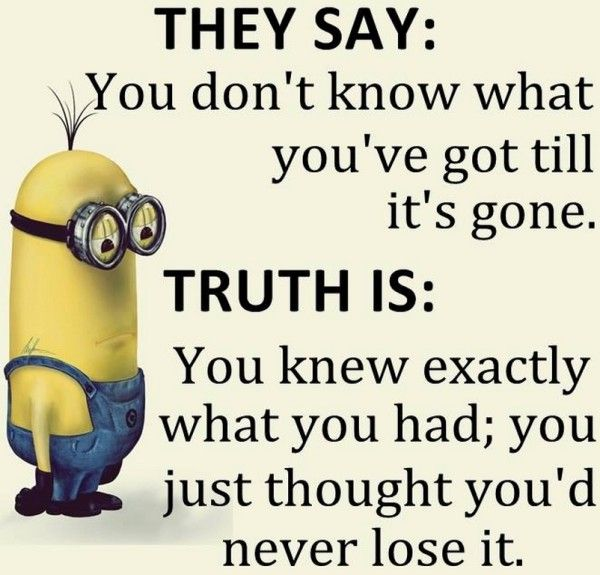 Hump Day Funny Minion Quotes: 1000+ Ideas About Happy Wednesday Images On Pinterest