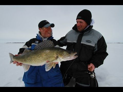 Best Ice Fishing Lure - YouTube http://dynamiclures.com/ Colorado trout fishing, fishing lures, trout lures.