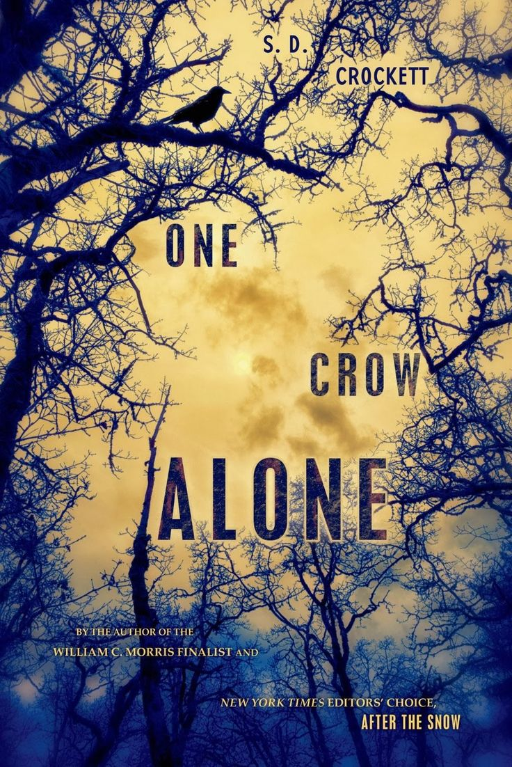 Born Bookish: Breathtaking Book Cover: One Crow Alone by S.D. Crockett