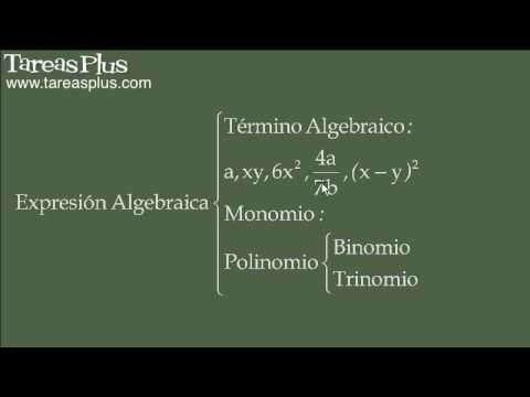 Expresiones algebraicas y términos algebraicos (conceptos clave)