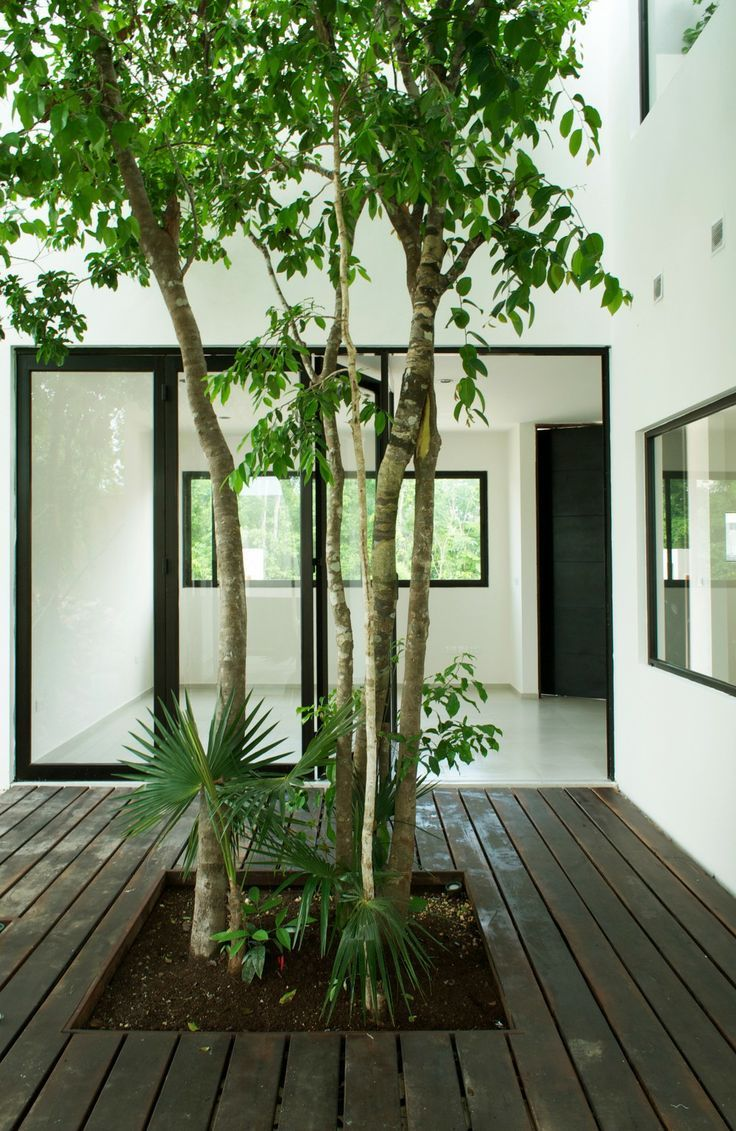 Patio inside the Casa W41 in Cancun by Warmarchitects. Photo � Zaruhy Sangochian.