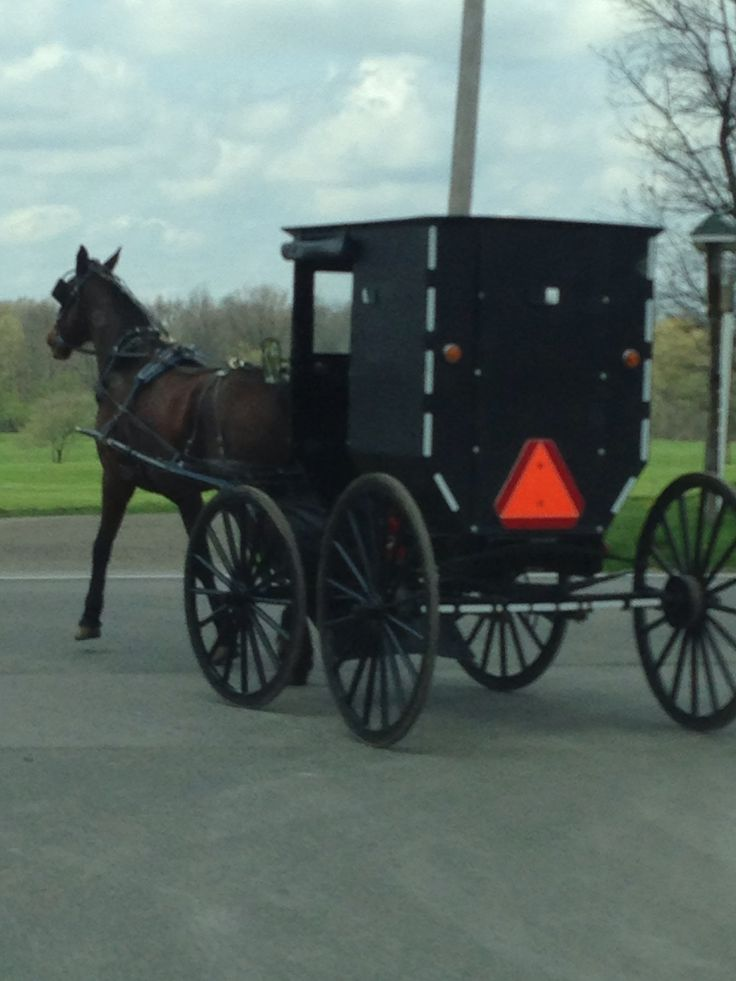 395 best images about all things amish on pinterest for Amish country things to do