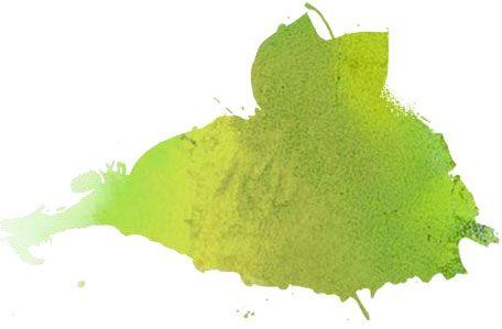 gin - soda tonique - jus de clémentine (ou d'orange) fraîchement pressé et filtré - trait de jus de lime