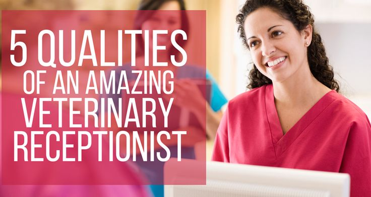 Do you have what it takes to be the face of a veterinary practice?