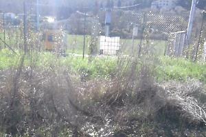 Umbria: #Sversamenti #nell'oasi del #Trasimeno (link: http://ift.tt/2lJUhlN )