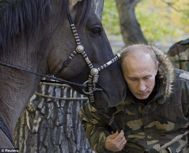Putin, horse whisperer