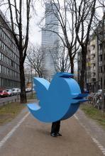 #twithubcgn: Ein blauer Vogel weist Twitter den Weg zum Dom