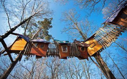 Die 24 coolsten Baumhaushotels in Deutschland