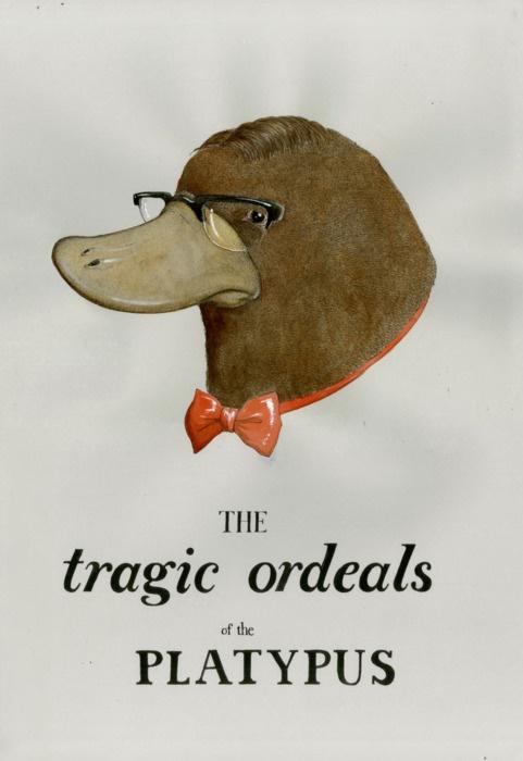 The Tragic Ordeals of the Platypus