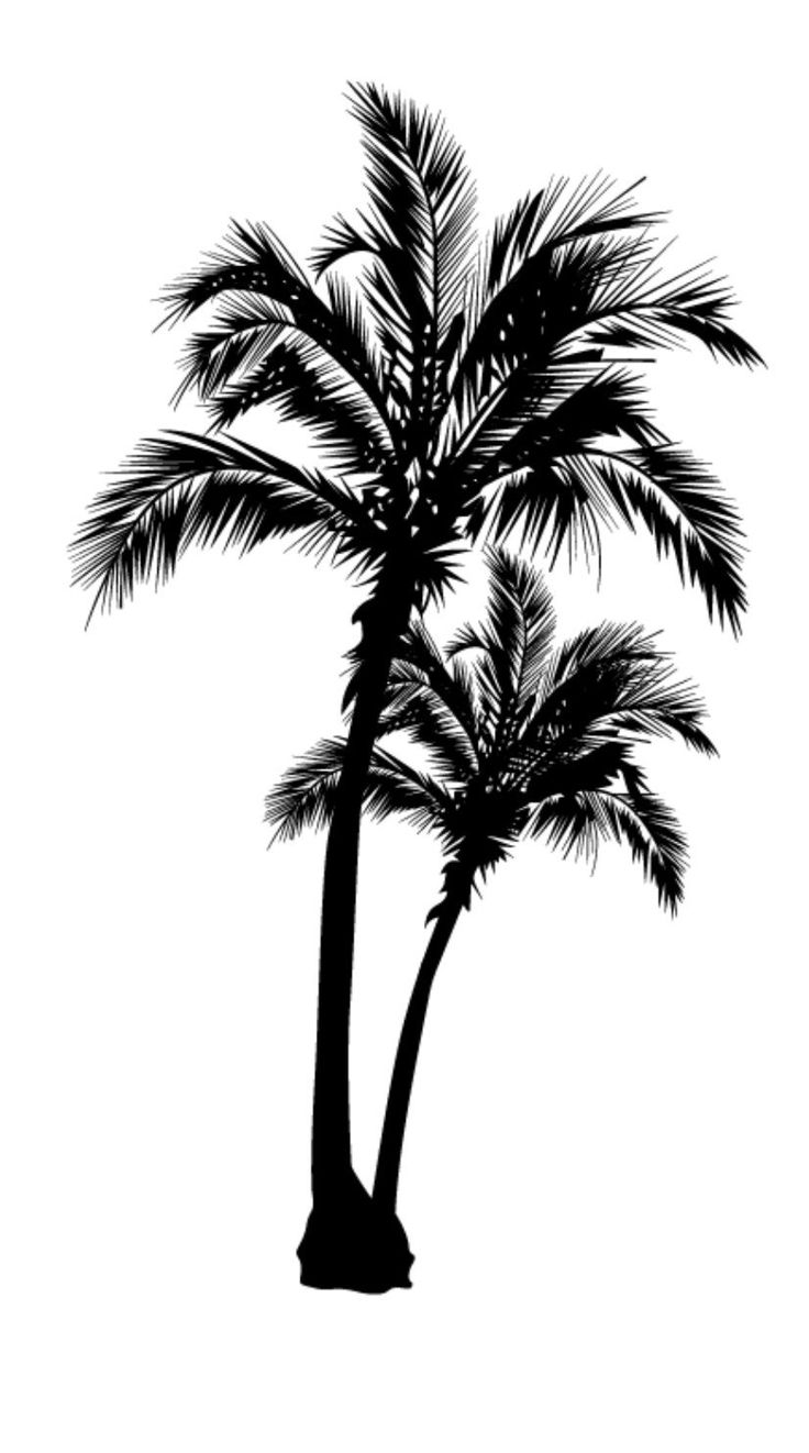 Beach Palm Tree Vinyl Decal Sticker Tree Tattoo Designs