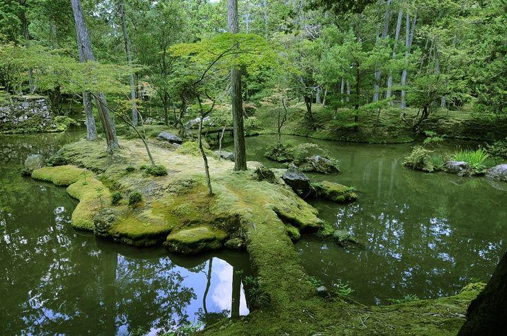 西芳寺(苔寺)【京都府】 : 日本国内の死ぬまでに一度は行きたい観光名所 - NAVER まとめ