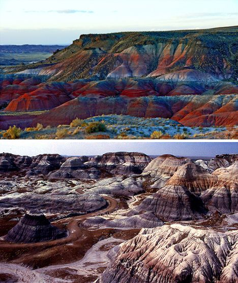 Petrified Forest: Arizona Paintings Desert, Arizona National Parks, Rugs Adventure, Arizona Usa, Petrified Forests Arizona, Forests National, Beautiful Places, Arizona New Mexico, Roads Trips
