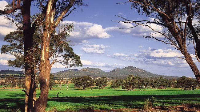 You Yangs Regional Park, where you can see emus, kangaroos and wombats in the…