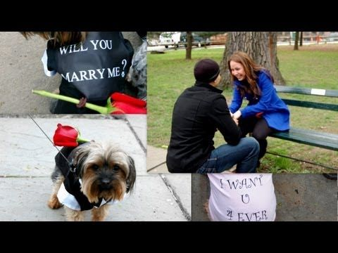 With the help of three puppies I proposed to my longtime girlfriend in Central Park.   She goes crazy for every puppy she sees, but can never spend too much time with them because she is allergic. So I thought of this sweet proposal idea. Everything took weeks of planning without her knowing. I thought of this original plan and had to do all the ...