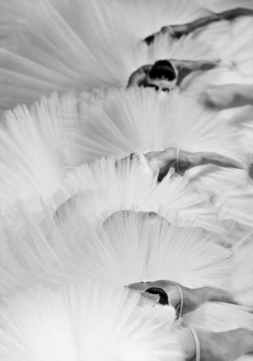 Ballerinas #ballet #dancers #photography
