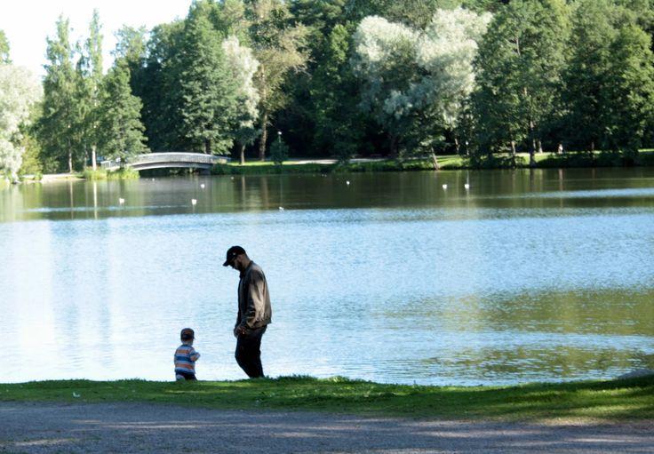 """Pikku-Vesijärvi """"Pikku Vesku"""" sijaitsee Vesijärven kupeessa Kariniemen puistossa vanhan linja-autoaseman läheisyydessä. Seutu on suosittu virkistysalue ja alueella järjestetään ympäri vuoden erilaisia yleisötapahtumia."""