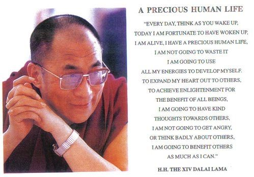 I am going to try and pin this as a daily reminder to live as a better person.: Human Life, Touch Quotesart, Dalai Lama, Quotes On Going Homes, Living Life, Better Personal, Favorite Quotes, Buddhist Benefits, Wise Word