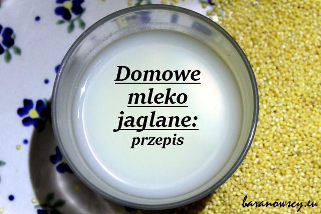 Po mleku owsianym (przepis) i mleku z różnych odmian ryżu (przepis) przyszedł czas na mleko jaglane. Muszę przyznać, że gotowe mleko, które kupuję (firmy Natumi), jest przepyszne. Niełatwo dościgną...