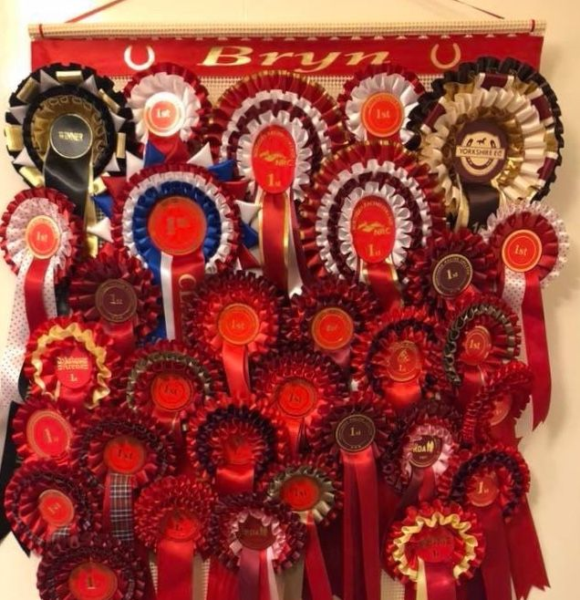 How to make horse show rosettes